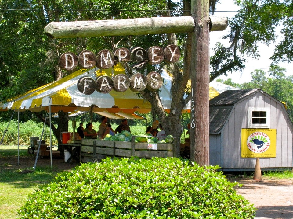 Dempsey Farms - South Carolina Department of Agriculture