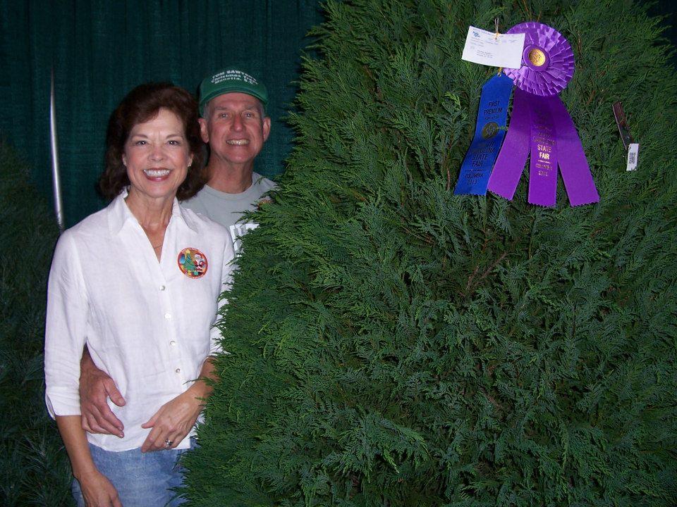 Tom Sawyer's Christmas Trees