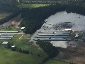 Photo Attachment C - Poultry Farm in Clarendon County